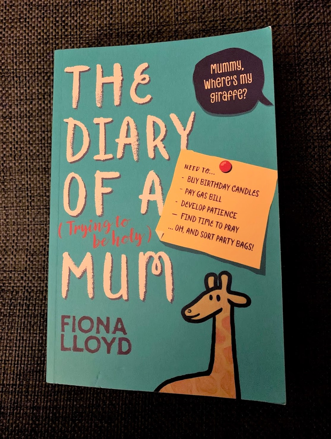 Fiona Lloyd - The Diary of a (Trying to be Holy) Mum