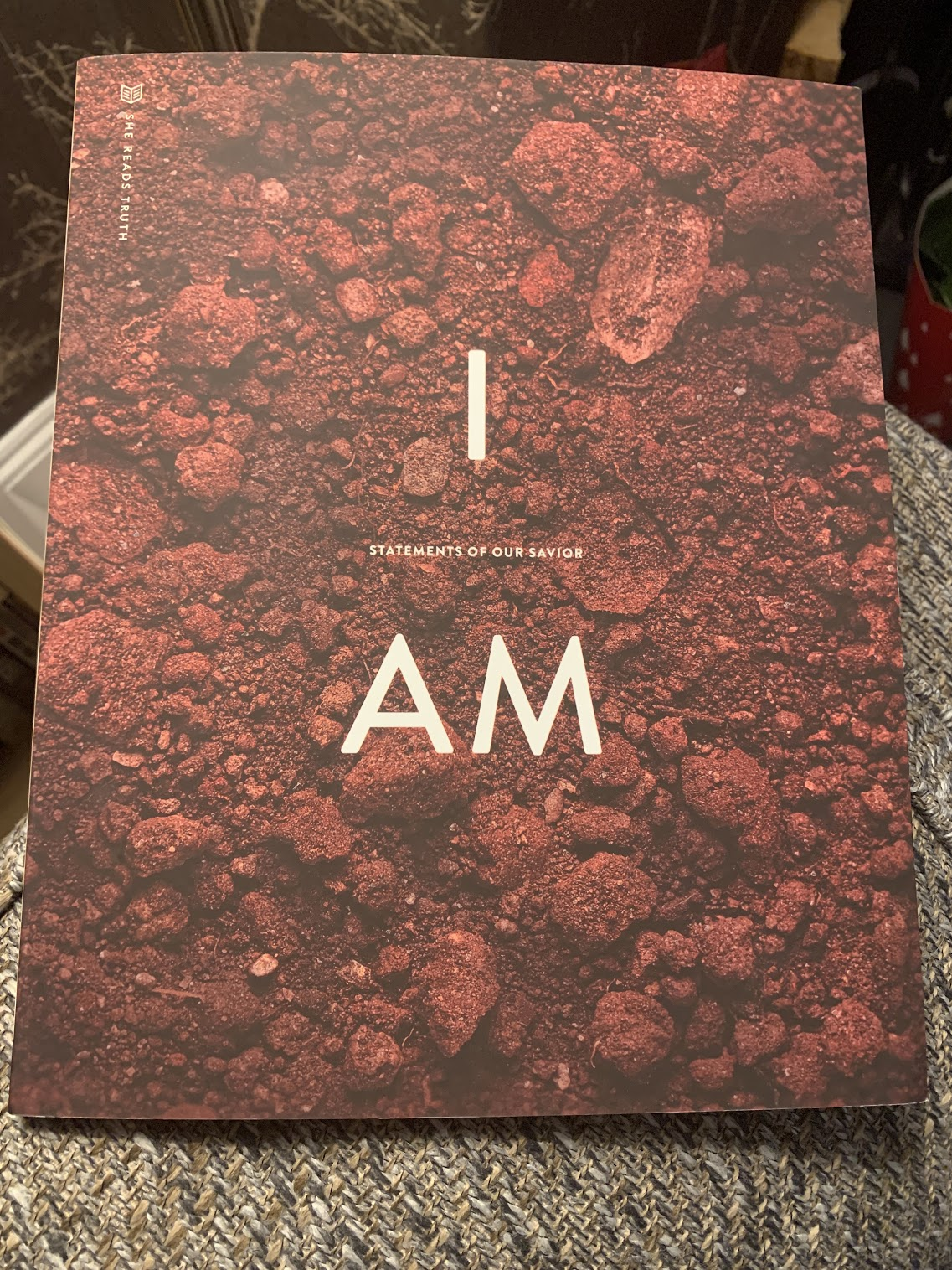 She Reads Truth - I Am